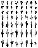 Silhouettes de cactus différent Photos stock