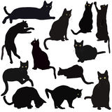 Silhouettes de chats noirs Images stock
