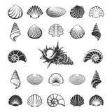 Silhouettes de coquille de mer illustration stock