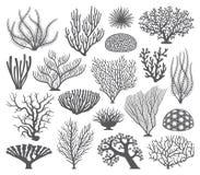Silhouettes de corail de vecteur de formations illustration libre de droits