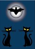 Silhouettes de deux chats noirs et 'bat' la nuit Photos stock