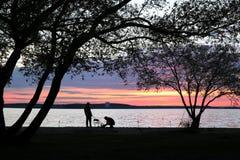 Silhouettes de deux pêcheurs sous de grands arbres photographie stock