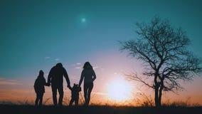 Silhouettes de famille heureuse marchant dans le pré près d'un grand arbre pendant le coucher du soleil banque de vidéos