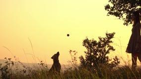 Silhouettes de fille jetant une boule Fille jouant avec le crabot banque de vidéos