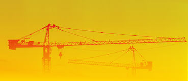 Silhouettes de grues en lever de soleil et regain Photo stock
