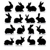 Silhouettes de lapin Photos stock