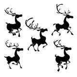 Silhouettes de rennes de Noël Poses de cerfs communs de Santa Photographie stock