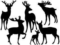 Silhouettes de vecteur des cerfs communs Illustration de vecteur de cerfs communs illustration de vecteur