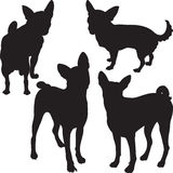 Silhouettes de vecteur des chiens dans le support Photographie stock libre de droits