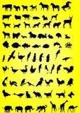 Silhouettes des animaux Images libres de droits