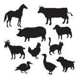 Silhouettes des animaux domestiques Images libres de droits