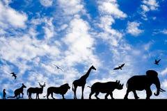 Silhouettes des animaux sur le ciel nuageux bleu Photographie stock