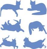 Silhouettes des chats bleus Photos stock