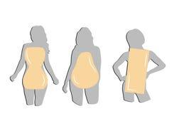 Silhouettes des femmes par type de le chiffre Illustration de vecteur photos stock