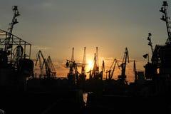 Silhouettes des grues de cargaison au port Image stock