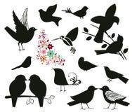 Silhouettes des oiseaux Photo stock