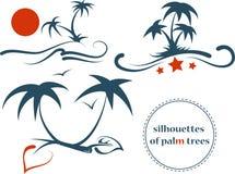 Silhouettes des palmiers Photos stock