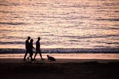 Silhouettes des personnes marchant avec un chien sur une plage Photographie stock