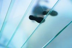 Silhouettes des personnes marchant sur un escalier en spirale en verre Photos stock