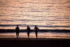 Silhouettes des personnes marchant sur une plage Images stock