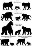 Silhouettes des singes illustration libre de droits