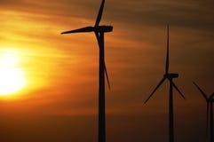 Silhouettes des turbines de vent à une ferme de vent au coucher du soleil Photographie stock libre de droits