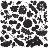 Silhouettes of different berries. On a white background stock illustration