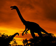 Dinosaurs. The silhouettes of dinosaurs in forest Royalty Free Stock Photos
