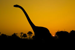 Silhouettes of dinosaurs Stock Images