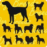 Silhouettes of Dogs - vector set. Stock Photos