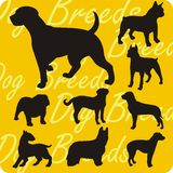 Silhouettes of Dogs - vector set. Royalty Free Stock Images