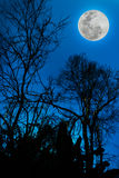 Silhouettes of dry tree against sky and beautiful full moon. Out Royalty Free Stock Photos