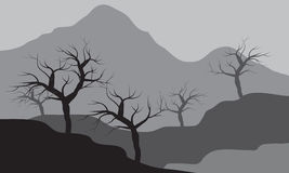 Silhouettes of dry tree forest Royalty Free Stock Images