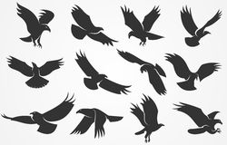 Silhouettes of eagles Stock Photography