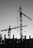 Silhouettes of elevating cranes Royalty Free Stock Photos