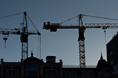 Silhouettes of elevating cranes Stock Image