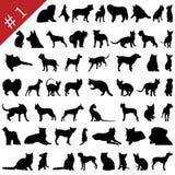 silhouettes för 1 husdjur royaltyfri illustrationer