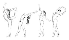 Silhouettes of female gymnasts. In gym Royalty Free Stock Photos