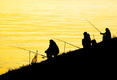 Silhouettes of fishing men. Three fishing men silhouettes at sunrise Stock Image