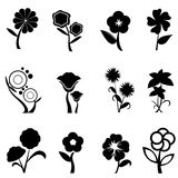 Silhouettes floral background Stock Images