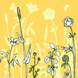 Silhouettes  of flowers and grass Stock Image