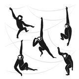 Silhouettes foncées de singes illustration stock
