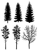 Silhouettes of forest trees. Set of black silhouettes of forest trees, fir and pine Royalty Free Stock Photo