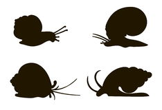Silhouettes of four snails Stock Photo