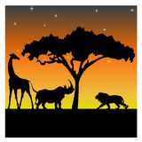 Silhouettes of a giraffe, a rhino and a lion Stock Images