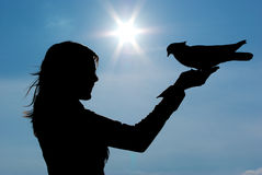 Silhouettes of girl and pigeon Royalty Free Stock Photography