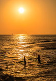 Silhouettes of  girls at sunset, swimming in the sea Stock Images