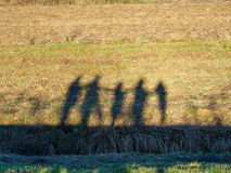 Silhouettes of group of person Stock Photos