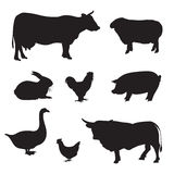 Silhouettes of hand drawn Farm animal Royalty Free Stock Photography