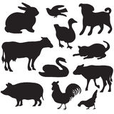 Silhouettes of hand drawn farm animals. Dog, cat, duck, rabbit, cow, pig, cock, hen, swan, puppy, kitten. Silhouettes of hand drawn farm animals Royalty Free Stock Images